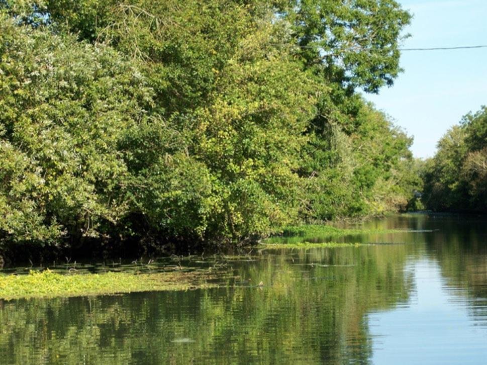 Une balade sur le Marais Poitevin